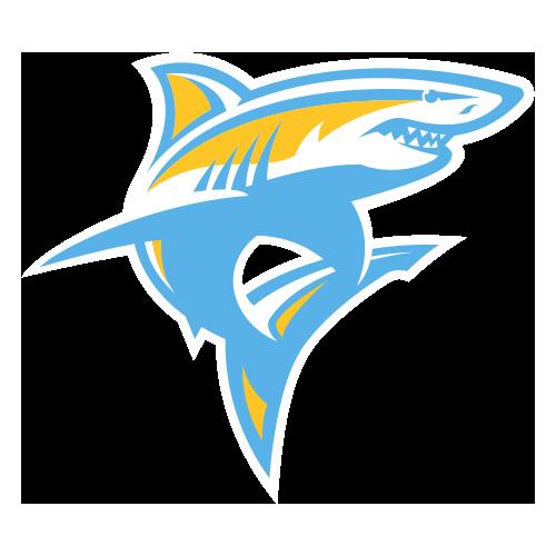 Long Island University Blackbirds