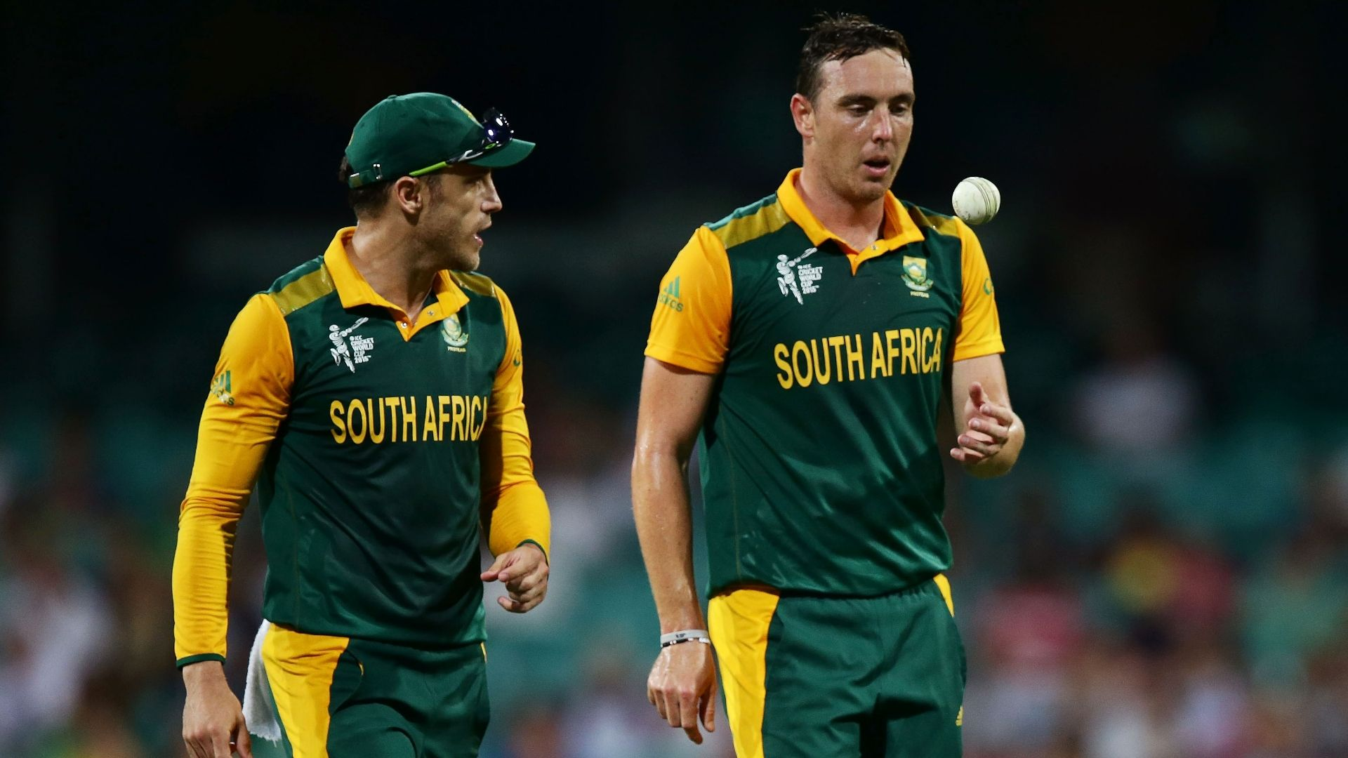 South African cricket review highlights - 189.2KB