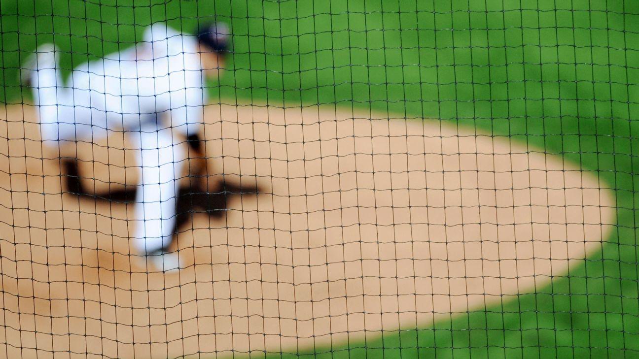 Redes protectoras béisbol