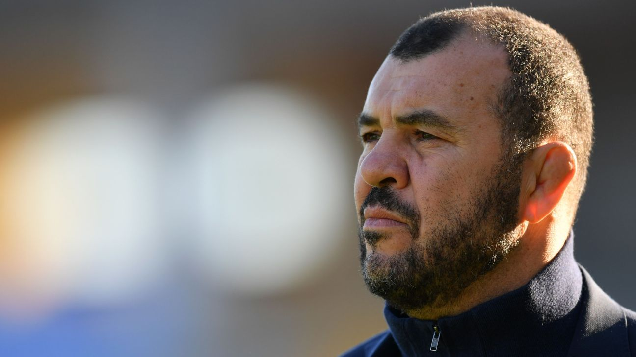 Rugby Australia board to consider Michael Cheika's position