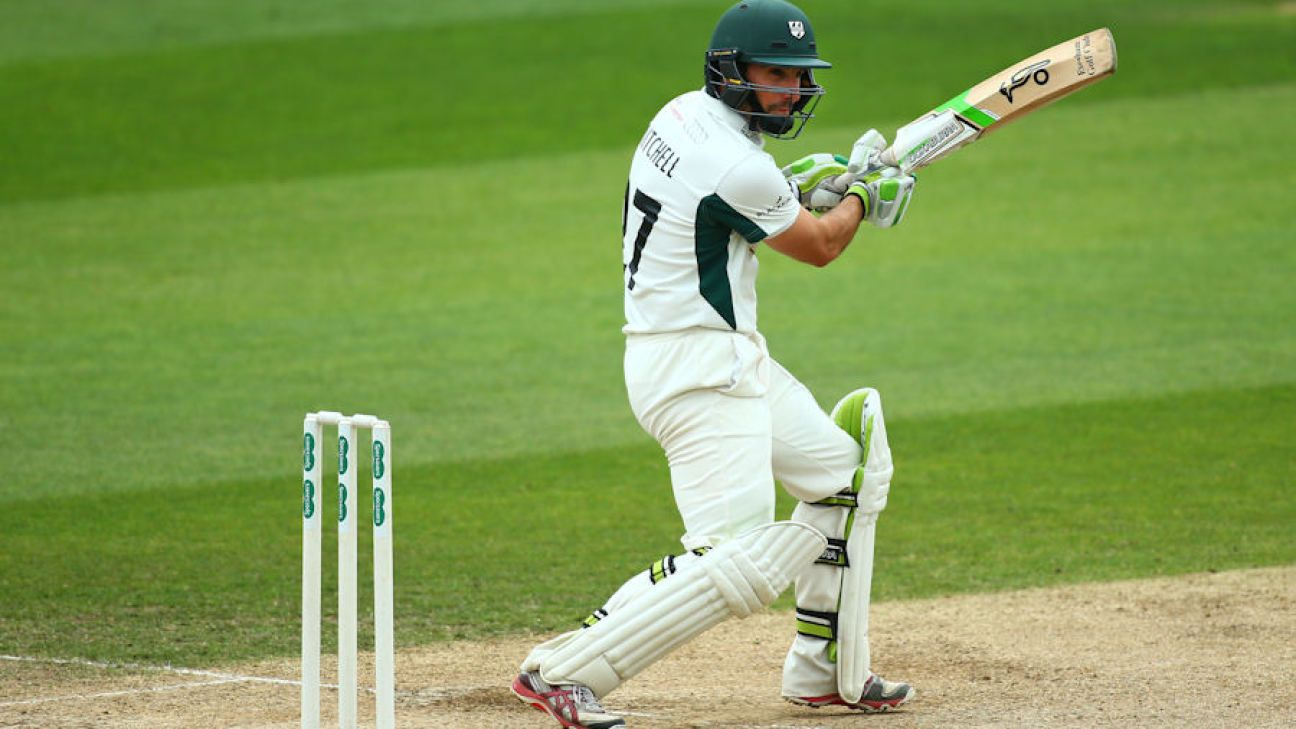 Mitchell's response lifts Worcestershire's spirits
