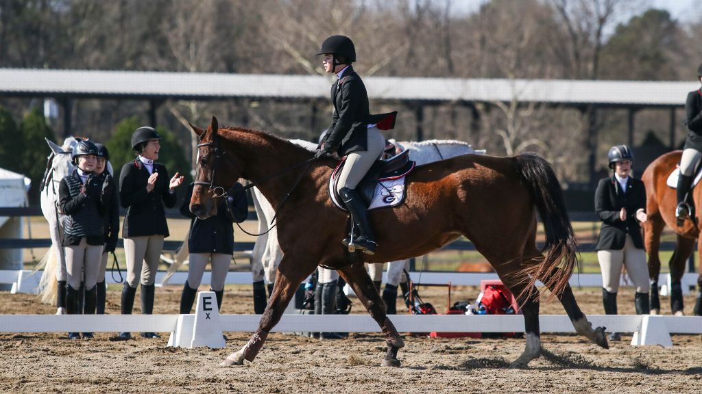 UGA equestrian advances to semifinal