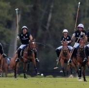 ELLERSTINA 17 - LA ENSENADA 6