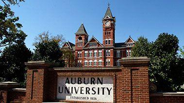 Auburn  Definition of Auburn by MerriamWebster