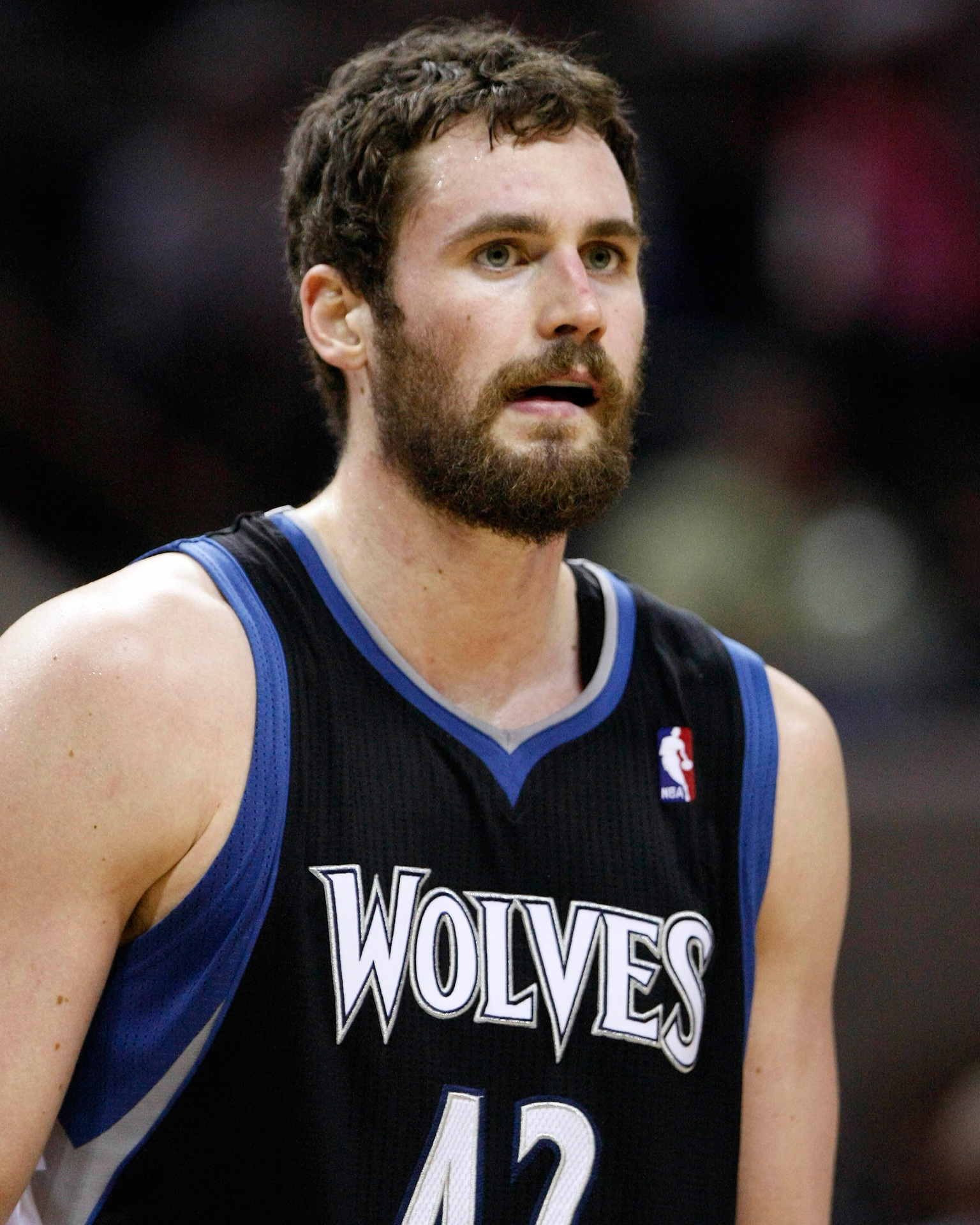 Kevin Love, Timberwolves