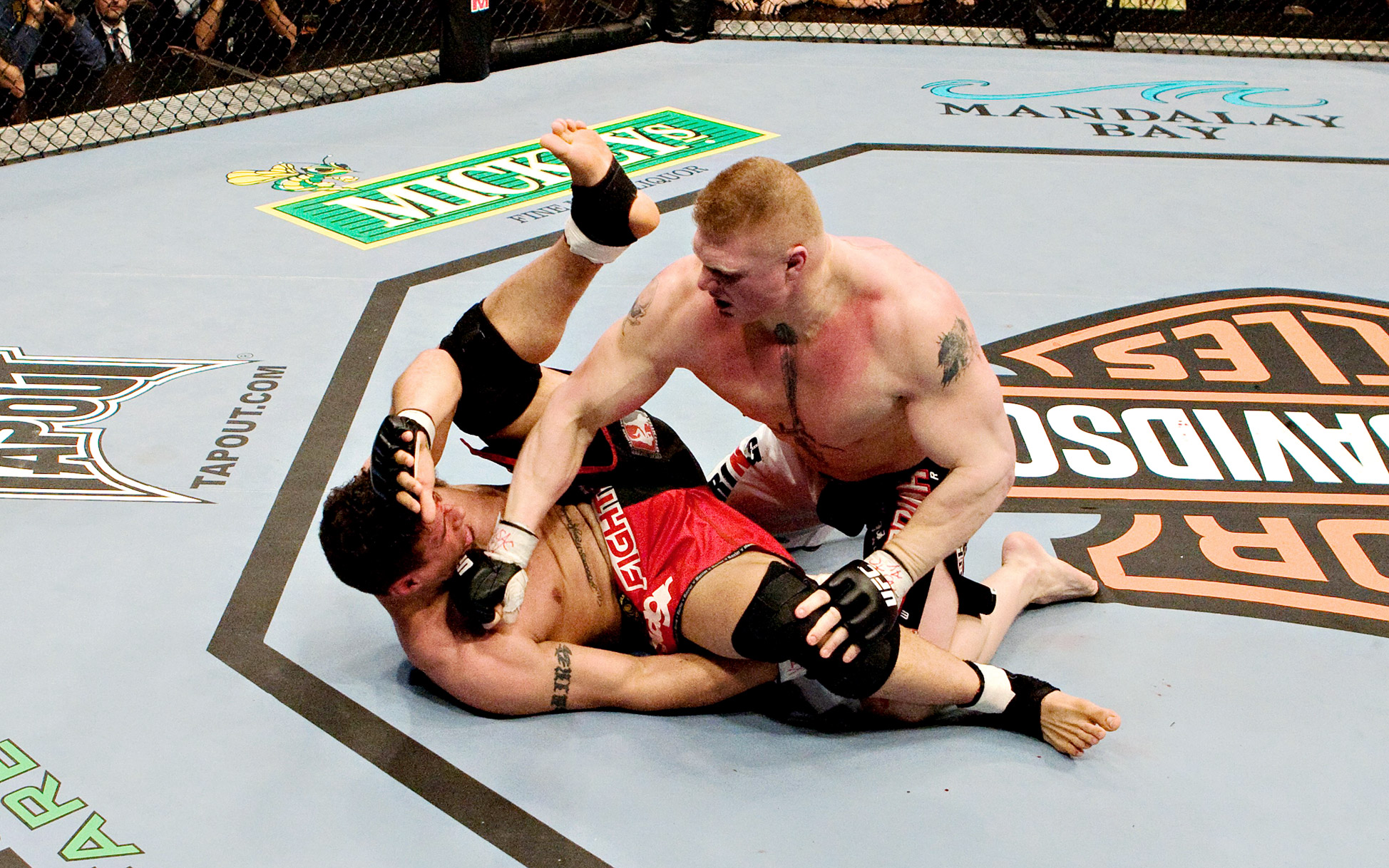 Frank Mir vs Brock Lesnar
