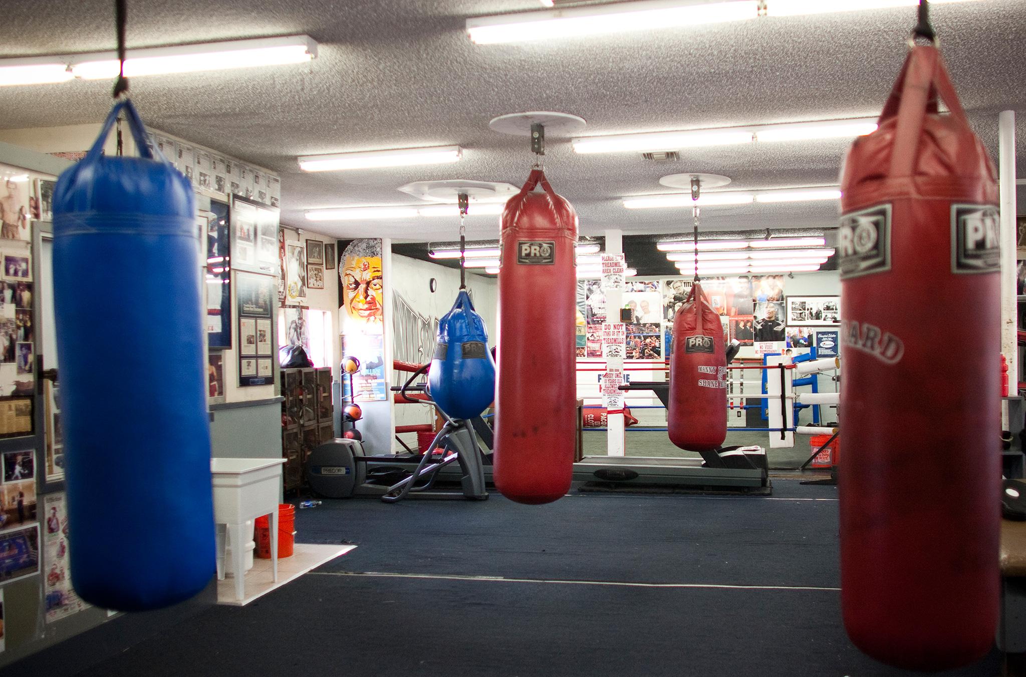 Wild Card Boxing Club, Hollywood, Calif.