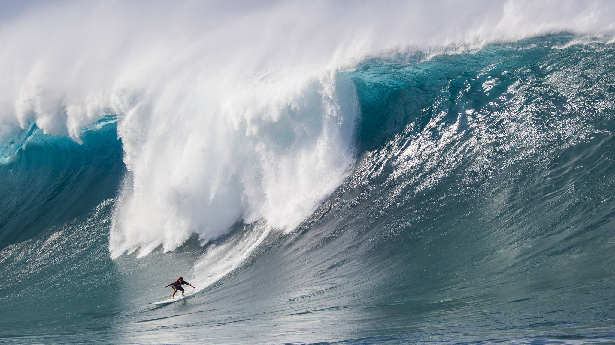 The Year in Surfing