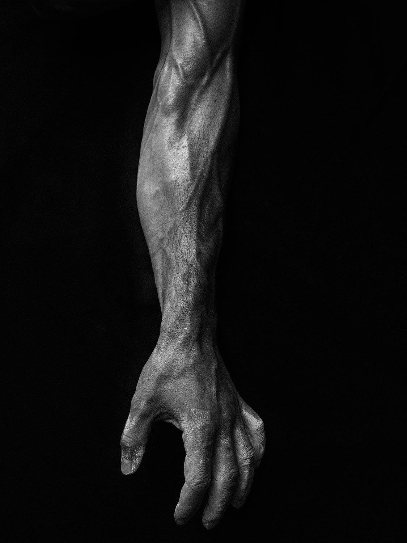 Body: Alex Honnold (Inline 4)