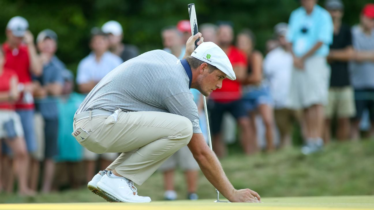Image result for bryson dechambeau flagstick IN
