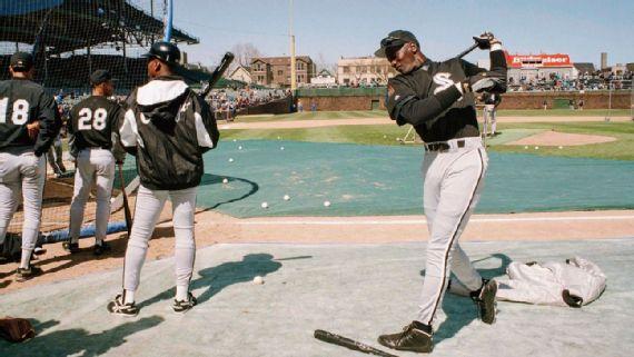 convergencia Énfasis Won  The true story behind Michael Jordan's brief-but-promising baseball career