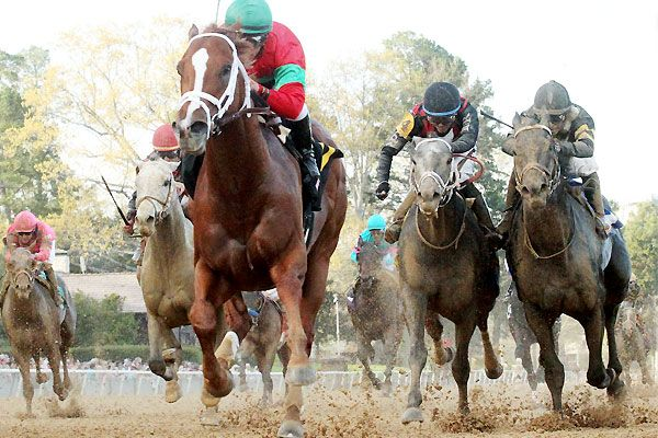 Malagacy Handles First Route In Rebel Stakes