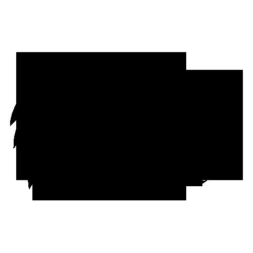 Айова